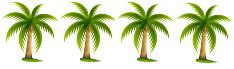 palmtree4